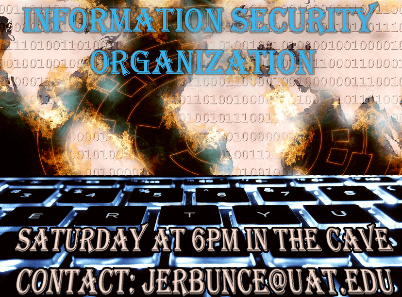 Information Security Organization