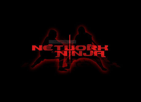 Network Ninja  | Cyber Security