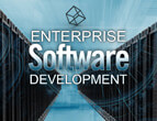 enterprise software development